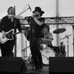 LaVendore Rogue @ Chiddfest - 19/07/14